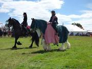 Ridden Friesian and Shire Horses