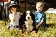 Children and Bernese Dog