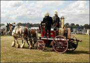 Shire Horses pulling a portable fire engine